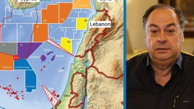 Photo of Expert hails Lebanese Armed Forces