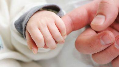 Photo of إليكم نسبة الولادات في لبنان.. الأرقام مُقلقة للغاية!